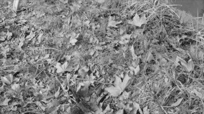 Tiziano Bellomi, Winter, video still, 2016